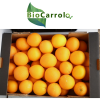 Imagen Naranjas Ecológica en Caja
