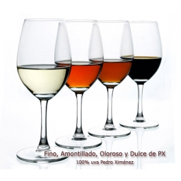 Visita de Bodega y Cata de 5 vinos