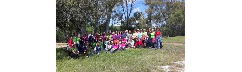 Actividades en la naturaleza para grupos