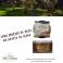 Imagen Lomo Ibérico de orza en aceite de oliva