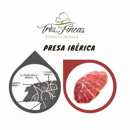 Presa Ibérica Tres Fincas