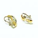 Imagen Pendientes en oro bicolor