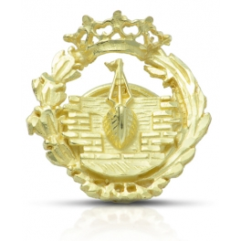 Insignia Ingeniero Naval...