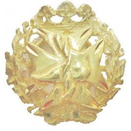 Insignia Podólogo oro 18 Klts