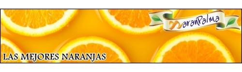 Las mejores naranjas de la cosecha