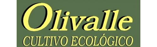 Aceite Oliva V. E. Ecológico