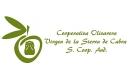 Imagen Cooperativa Olivarera Virgen de la Sierra de Cabra S. Coop. And.