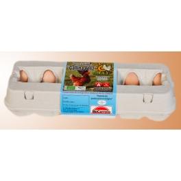 Huevos Ecologicos clase L