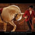 Imagen Pasión y Duende del Caballo Andaluz