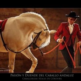 Pasión y Duende del Caballo Andaluz